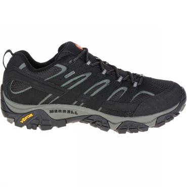 Mens Moab 2 GTX Shoe