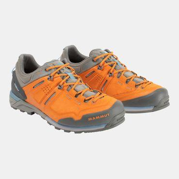 Mens Alnasca Low GTX