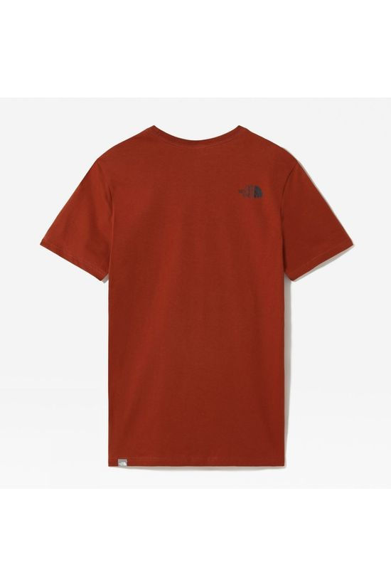 The North Face Mens Short Sleeve Easy Tee Brandy Brown
