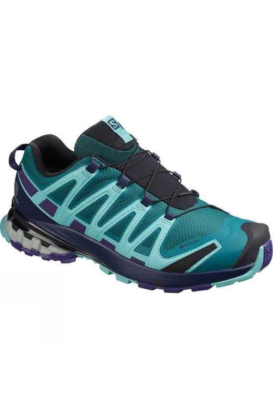 Salomon Women's XA Pro 3D V8 GTX Shoe Shaded Spruce/Evening B/Meadowbrook