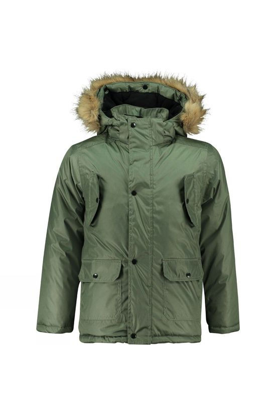 Ayacucho Vyju Junior Parka Forest