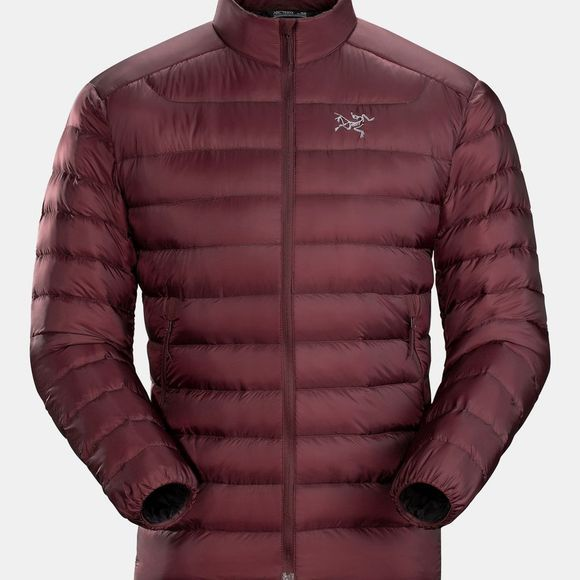 Arc'teryx Mens Cerium LT Jacket Flux