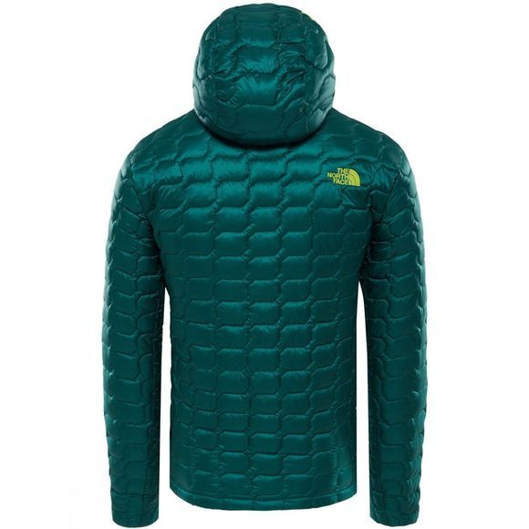 The North Face Mens Thermoball Hoodie Botanical Garden Green