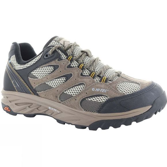 Mens Wild-Fire Low I Waterproof Shoe