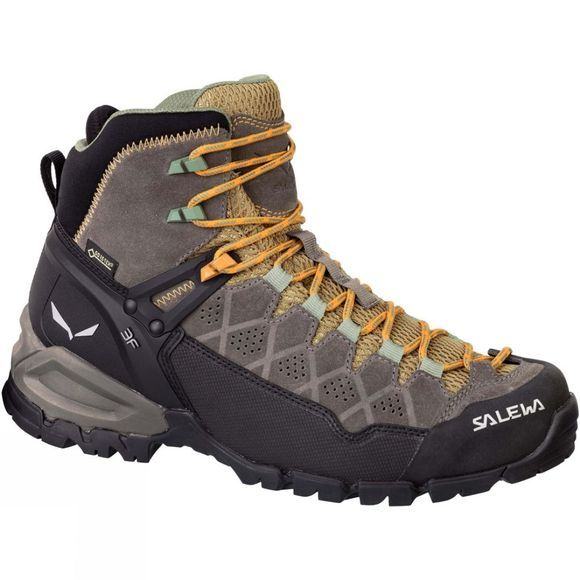 Womens Alp Trainer Mid GTX Boot