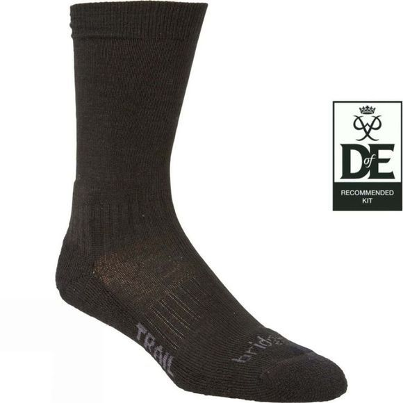 Bridgedale Mens Lightweight Merino Endurance Sock Black