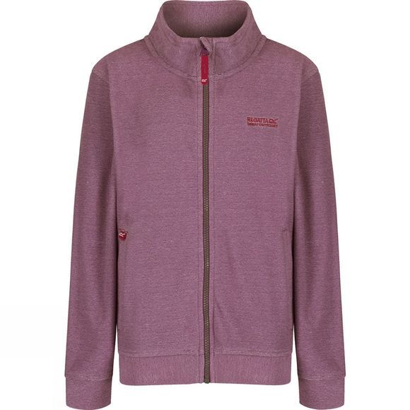 Regatta Kids Harlin Fleece Age 14+ Vivid Viola