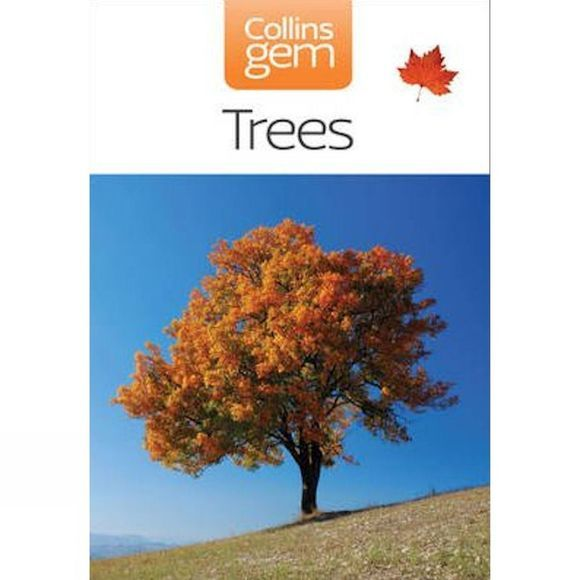 Harper Collins Trees No Colour