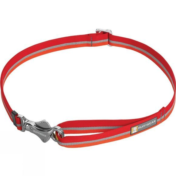 Patroller Leash