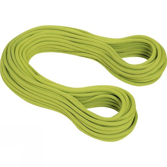 Mammut 9.5 Infinity Dry 60m Rope Dry Standard, Pappel/Limegreen