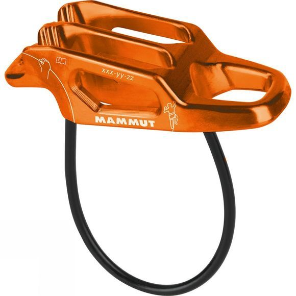 Wall Alpine Belay