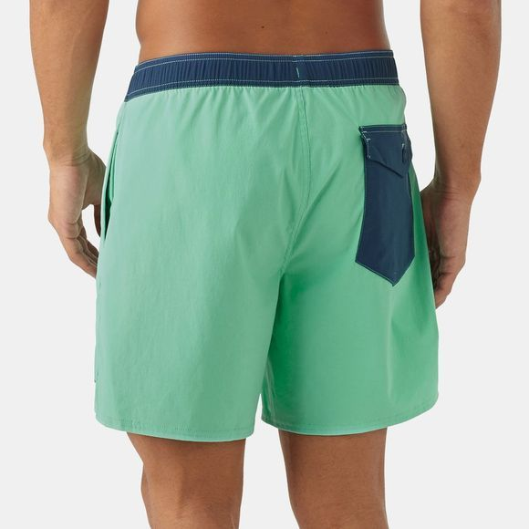 Patagonia Mens Stretch Wavefarer Volley Shorts 16in Vjosa Green