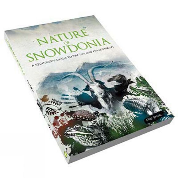 Pesda Press Nature of Snowdonia: A Beginner's Guide to the Upland Environment No Colour